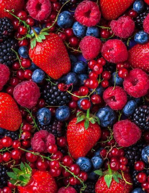 Fruits rouges & Baies